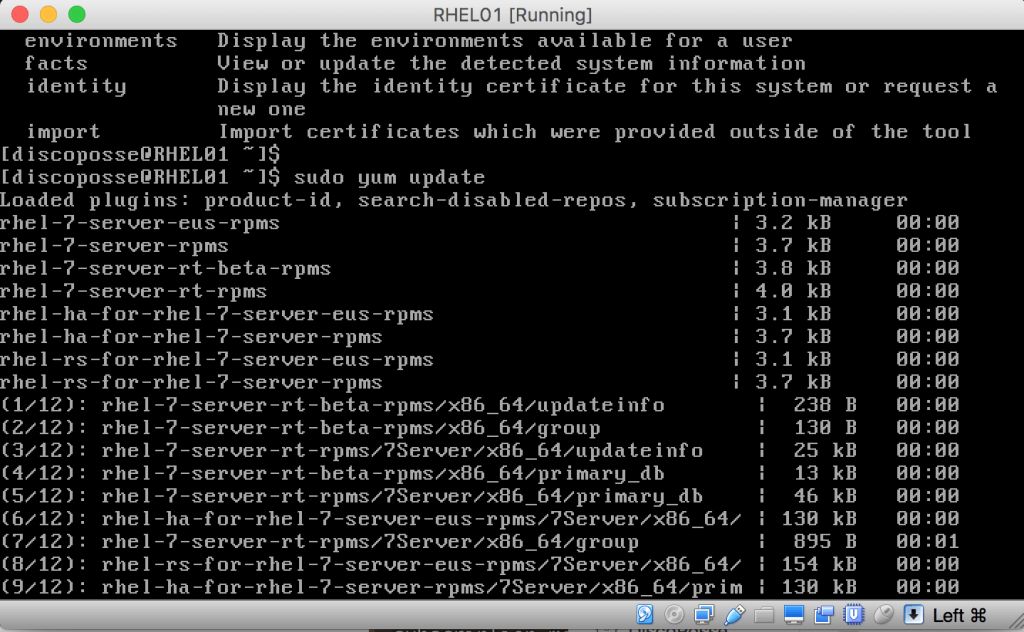 sudo yum update start RHEL 7